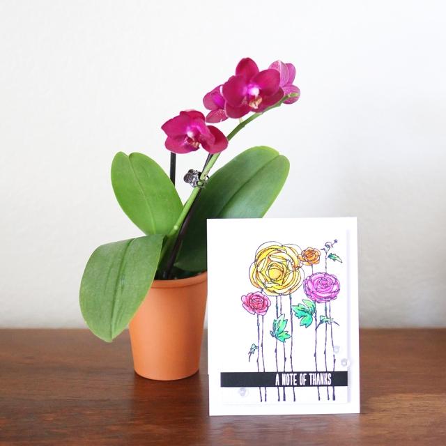 ahsang gift&card 2