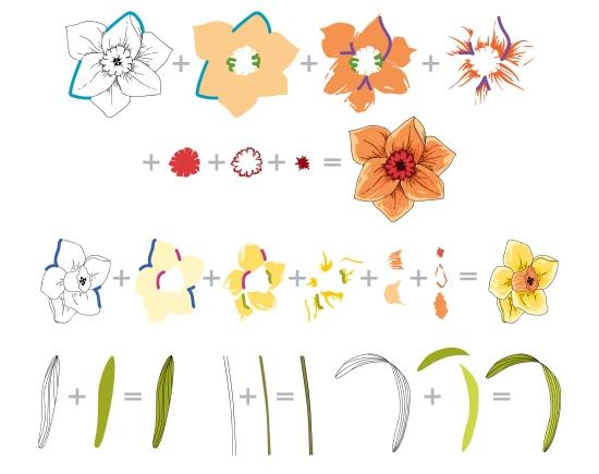 BAF Daffodil Layering Guide